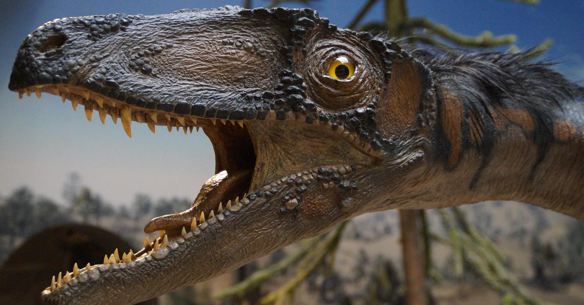 LA REP / REDAC / Dinosaures 19