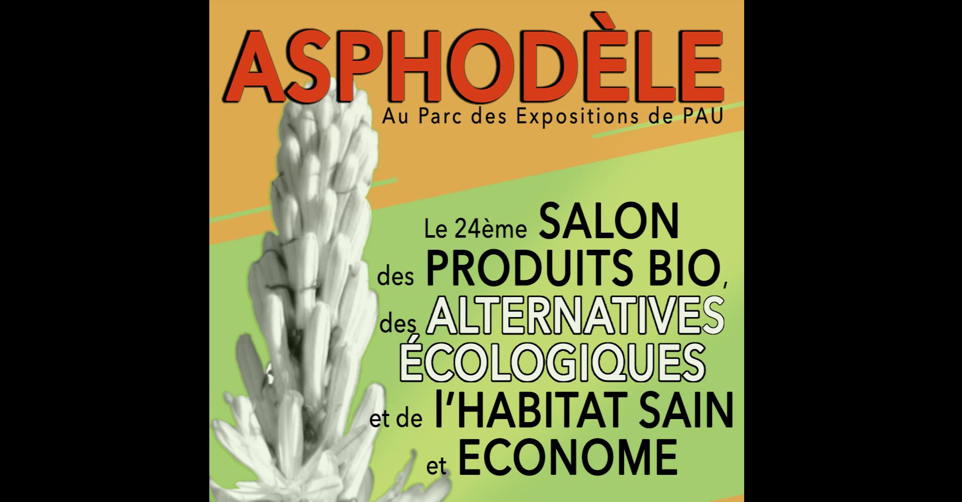 LA REP / COM / Asphodele déc 19